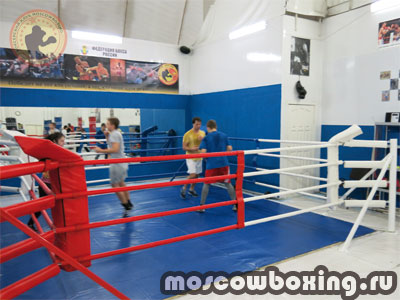 Бокс клуб динамо москва клуб 8 путешествий москва
